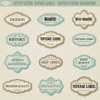 Set of vector vintage labels — Stock Vector
