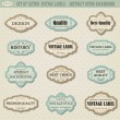 Set of vector vintage labels — Stock Vector #24491451