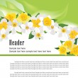 Flower daffodil fresh spring background — Stock Vector #24492005