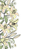 White background with gentle flowers lily. Elegant floral vector border — Stock Vector