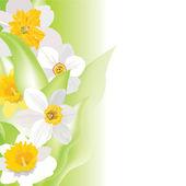 Flower background. Spring floral vector border — Stock Vector