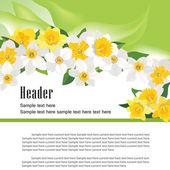 Flower daffodil fresh spring background — Stock Vector