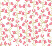 Seamless pattern with lilac and pink flowers sweet peas on white background — Stock Vector