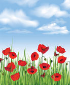 Colorful fresh spring flowers seamless border. sky background. Grass, poppies, butterfly. Decor edge. Summer. — Vecteur