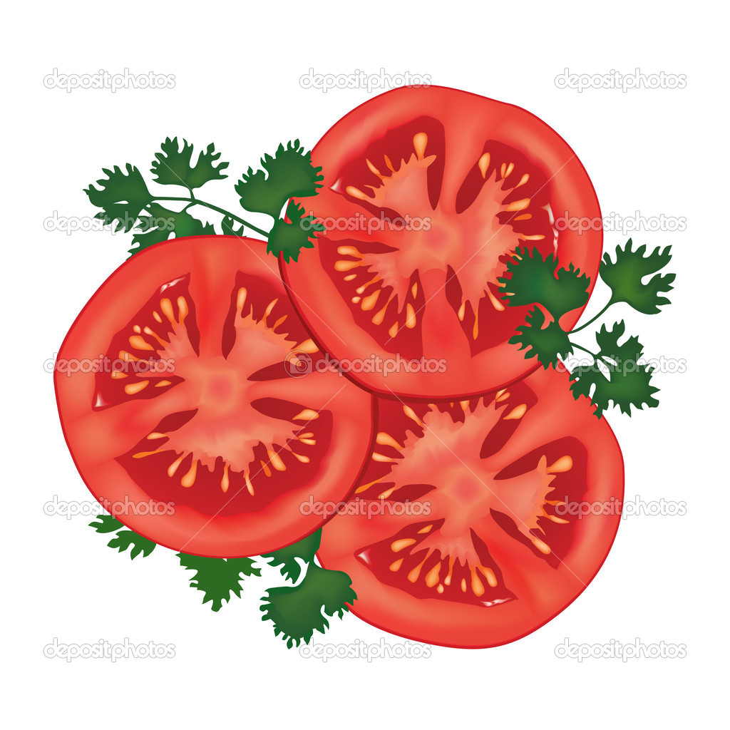 Tomato Slice Illustrat...
