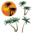 Set of various palm trees. Objects isolated. Tropical sunset beach with palm trees icon. Vector tropical collection. — Stock Vector #27568439