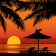 Sunset view in beach with palm tree — Imagen vectorial