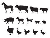 Farm animals vector set. Livestock. — Stock Vector