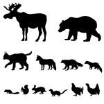 Animals living in taiga — Stock Vector