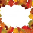 Autumn frame. Oak leaves and vector with copy space — Stock Vector