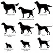 Silhouette Collection of gundog. — Stock Vector #30042041