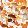 Mushrooms and maple leaves seamless pattern — Stock Vector