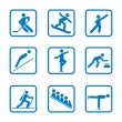 Set of winter sport icons — Stock Vector #30042605