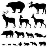 Animali che vivono nella foresta di europien — Vettoriale Stock