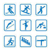 Set of winter sport icons — Stock Vector
