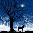 Winter forest with deer — Stock Vector
