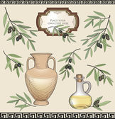 Green olive branch set. Natural olive product label vector collection. — Stock Vector