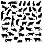 猫シルエット セット. — ストックベクタ