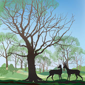 Spring landscape with two deers — Vector de stock