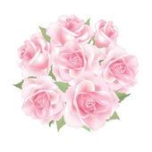 Rose posy — Stock Vector