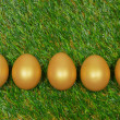 Five golden eggs on a green artificial turf — Stock Photo