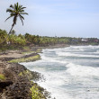 Varkala coast — Stock Photo