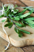 Bunch of fresh rosemary — Foto Stock
