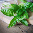 Fresh basil on wooden table — Stock Photo
