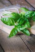 Fresh basil on wooden table — Stock Photo