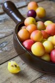 Delicious ripe plums in pan — Stok fotoğraf