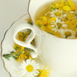 Herbal chamomile and tutsan (St. John's wort) tea — Stock Photo