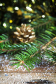 Pine branches Christmas decoration — Stock Photo