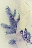 Pine branches and gift ribbon. — Stock Photo
