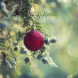 Red Christmas baubles on tree — Stock Photo #34473453
