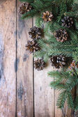 Pine branches,cones.Christmas concept. — Stock Photo