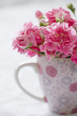 Gentle pink flower in pink cup. — Stock Photo