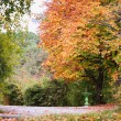 Autumn road and green small fountain. — Stock Photo