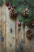 Pine branches,cones. — Stock Photo
