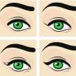 Phased eye makeup. Arrows. Vector illustration — Stock Vector #20136029