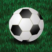 Football on a grass background — Stockfoto
