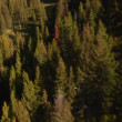 Stock Video: Aerial shot of forest and mountainside