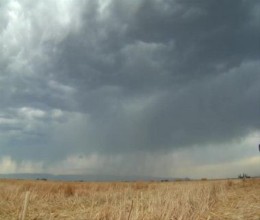 Stormy skies and lightning over wheat field — Stock Video