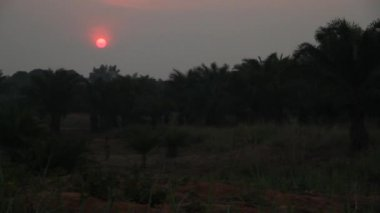 African sunset with fiery pink orb — Stock video