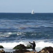 Rocky Ocean shore with sightseers and sailboat — Stock Video