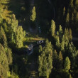 Aerial shot of forest at Canyon with waterway — Stock Video