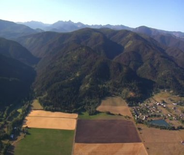 Aerial shot of forest and mountainside and fields — Stock Video