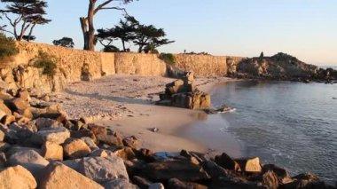 Amoureux point pacific grove californie — Vidéo