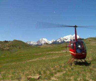 Röd helikopter i gräsbevuxna fält — Stockvideo