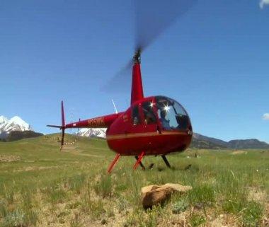 Skott av röd helikopter landar i gräsbevuxna fält — Stockvideo