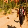 Hikers in Bryce Canyon national Park — Stock Video #32947175
